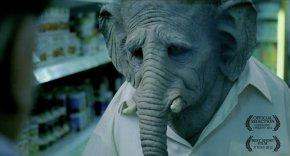 Elefante |Short Film