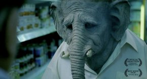 Elefante (9:02 min)