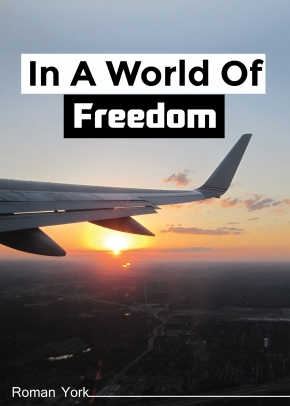 'In a World of Freedom'- indie book of the day!