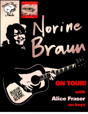 The Norine Braun Chronicles: Journal of a Grassroots Musician