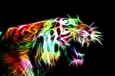 glowing animal 3